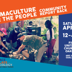 April 30: Part 4 of MG's Race, Class, & Ecology Series: Permaculture for the People Community Report Back!